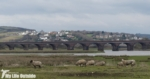 Upper Loughor