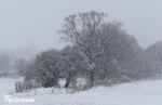 December Snow in Leeds