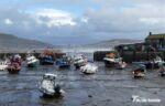 P1180670 - Lyme Regis